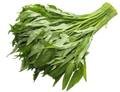 パックブーンチン|ผักบุ้งจีน|中国空芯菜